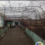Продается  газифицированный  дом пос. Роза, г. Бердянск