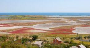 Дачный участок в заповедной зоне курортного г. Бердянск